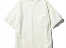 AURALEE-STAND-UP TEE - White