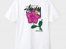 STUSSY-Cali Rose - White