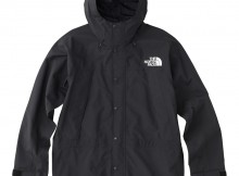 THE NORTH FACE-Mountain Light Jacket - Black